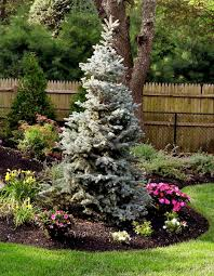 evergreens basics landscpaing co inc
