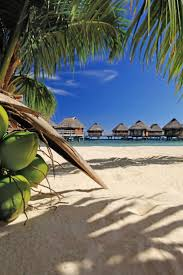 50 best manava beach resort u0026 spa moorea images on pinterest