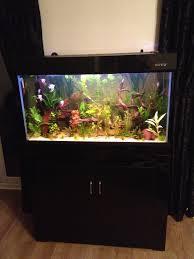 our customer u0027s beautiful boyu fish tank http www