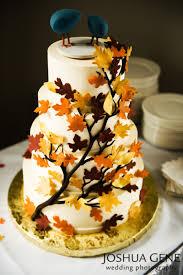 easy fall cake ideas