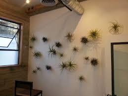 designer neumã nster 75 best garden design images on terrarium ideas