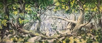 forest backdrop tangled forest backdrop backdrops by charles h stewart