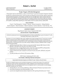 manager resume summary best project manager resume program manager resume summary