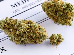 Wildfire Weed by How Much We Know About Marijuana And What Questions Remain