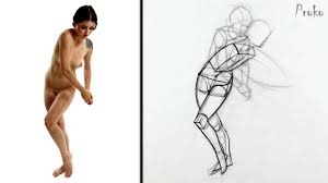 proko figure drawing fundamentals course avaxhome