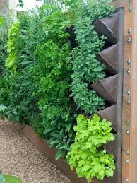 indoor herb garden wall herb wall herbs and a few veggies better suited for vertical