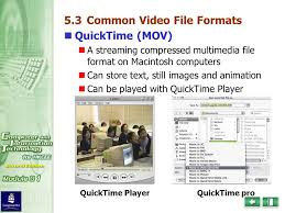 file format quicktime player what are the common format for video files ppt video online download