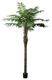 artificial florida beach palm at evergreen direct