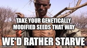 Skeptical African Kid Meme - yes our food is that bad imgflip
