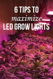 best light to grow pot 138 best led grow lights images on pinterest led grow lights grow
