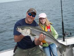 articles cape cod fishing charters part 2