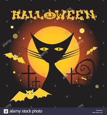 icon halloween cat witch flat icon halloween stock vector art u0026 illustration