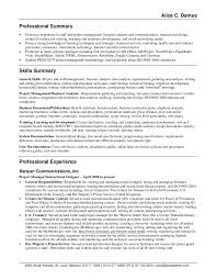 exles of professional summary for resume summary statements exles home design ideas home design ideas
