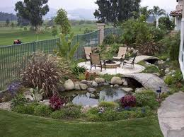 small garden pond pictures pool design ideas