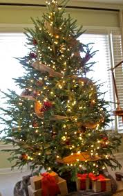 Home Christmas Tree Decorations Jenny Steffens Hobick Home Holiday Decorations Christmas Tree