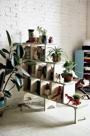 home interior plants 6 masculine friendly ways to incorporate indoor plants into your