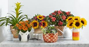 fall flowers u0026 vase collection by proflowers