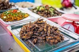 insectes cuisine suisse les insectes arrivent au supermarché suisse lematin ch
