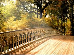backgrounds for photography beautiful wooden bridge picture 7145 pictures