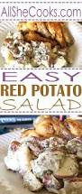 Easy Salad Recipe by Best Easy Red Potato Salad Recipe Party Food Recipes