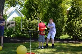 angry birds backyard game angry birds party pinterest angry