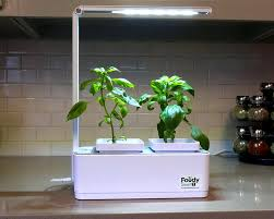 growing plants indoors with artificial light lighting tips for growing herbs indoors the herbalist