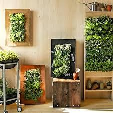 indoor garden lights home depot indoor home garden home hydroponics systems indoor gardening indoor