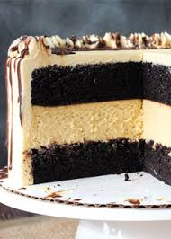 chocolate pumpkin cheesecake cake recipe chocolate cakes