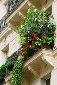 paris balcony balconies pinterest paris balcony
