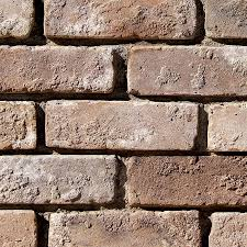 Stone Brick by Shop Coronado Stone Products 2 5 In X 8 In Special Use Eagle Buff