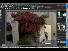 how to resize a photo in corel paintshop pro photography