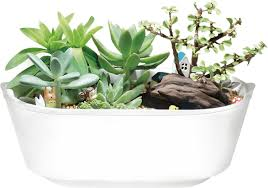 garden time australia your personal indoor herb garden
