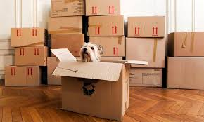 How To Put A Box Together How To Pack Your Home With These Quick Packing Tips