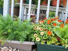 hanging vegetable baskets archives the cobrahead blog the