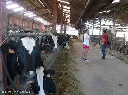 chambre agriculture du tarn une journée pour préparer l avenir du lait dans le tarn