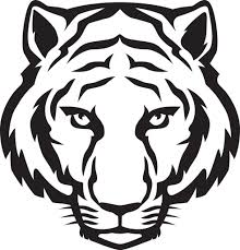 black and white tiger easy drawings tiger black and white clipart