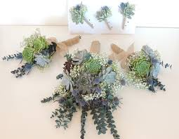 succulent bouquet succulent bouquet blue thistle