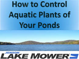 algar owner are you a lake owner and finding the easiest way to clean aquatic