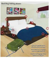 Can Bed Bugs Kill You Pest Control Heat Treatment Equipment Pest Control Company Bed