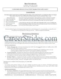 sample product manager resume it network manager resume sample