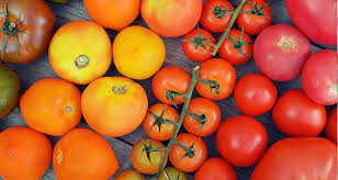 benefits tomatoes and prostate cancer risk