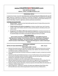 sle resume for business analysts duties of executor of trust writing research essays help to write a research paper sle