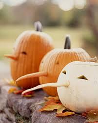 Martha Stewart Halloween Pumpkin Templates - best 25 jack o u0027 lantern ideas on pinterest jack o lantern faces