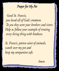 pet prayer prayer for augie heart for augie pet care