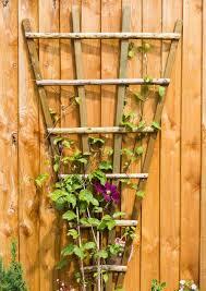 garden fan trellis home design inspirations