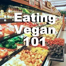 best 25 vegan recipes for beginners ideas on pinterest vegan