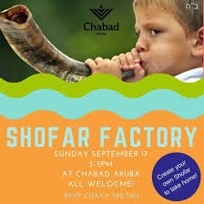 shofar factory shofar factory chabad center of aruba