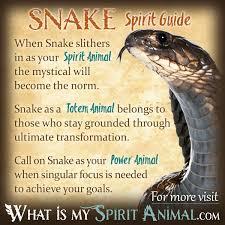 snake symbolism meaning spirit totem power