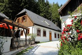 chalet houses pet friendly vacation rentals houses for rent gillaus chalet