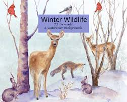 winter wildlife watercolor clip art pine trees snow deer fox